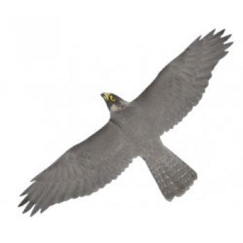 """Фото визуального отпугивателя птиц """"Хищник 1"""""""